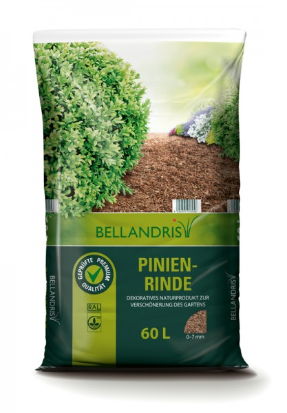 Bellandris Pinienrinde